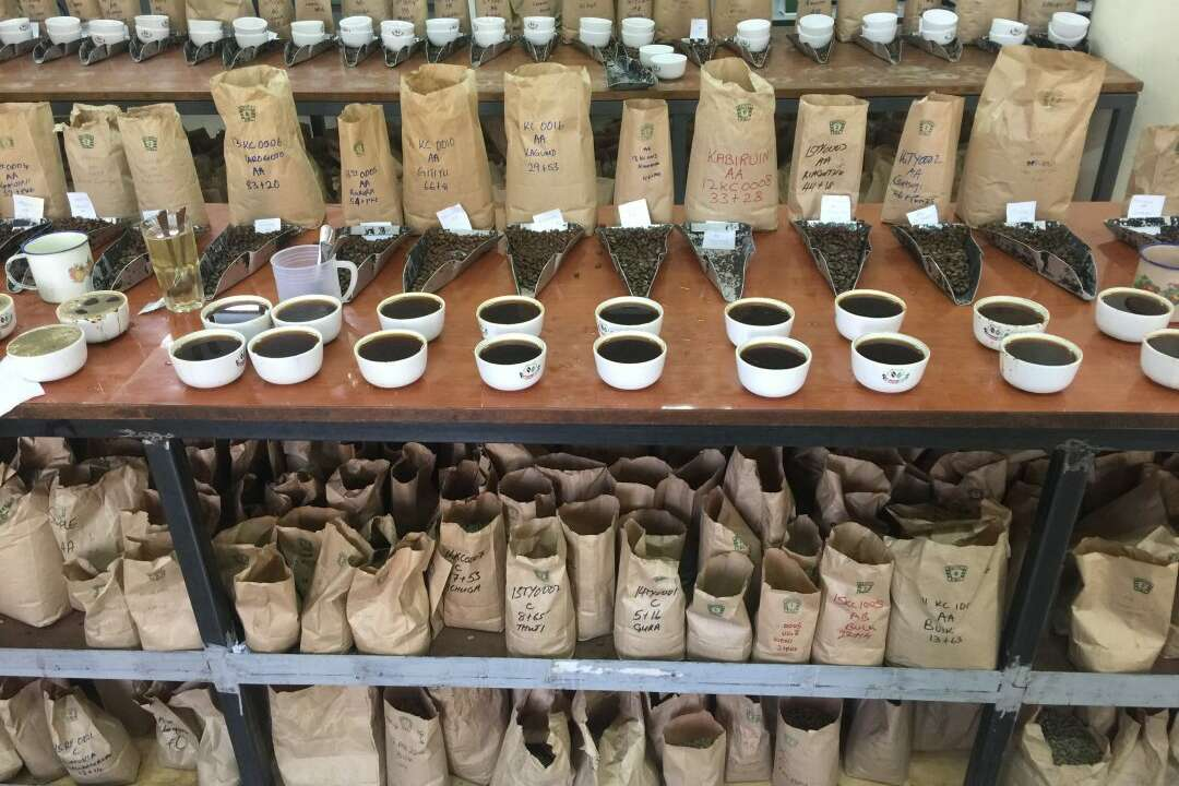 CMA Issues Guidance For Transition at The Nairobi Coffee Exchange