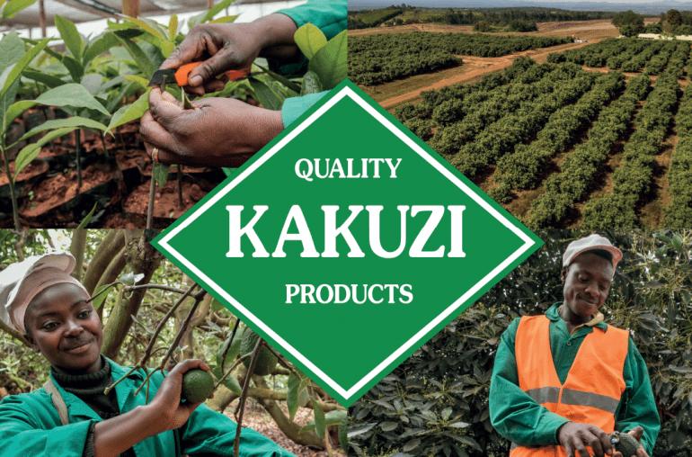 Kakuzi logo