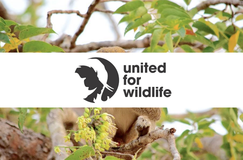 M-Pesa Becomes First African FinTech to Join United for Wildlife Financial Taskforce